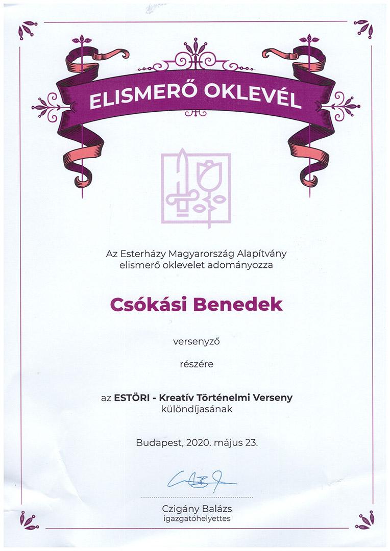 http://www.puskas.hu/100/images/csokasi_estori_20.jpg