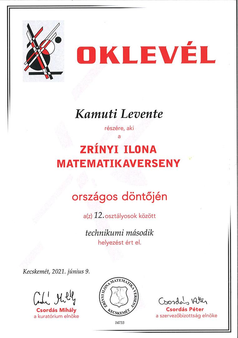 http://www.puskas.hu/100/images/kamuti_zrinyi.jpg